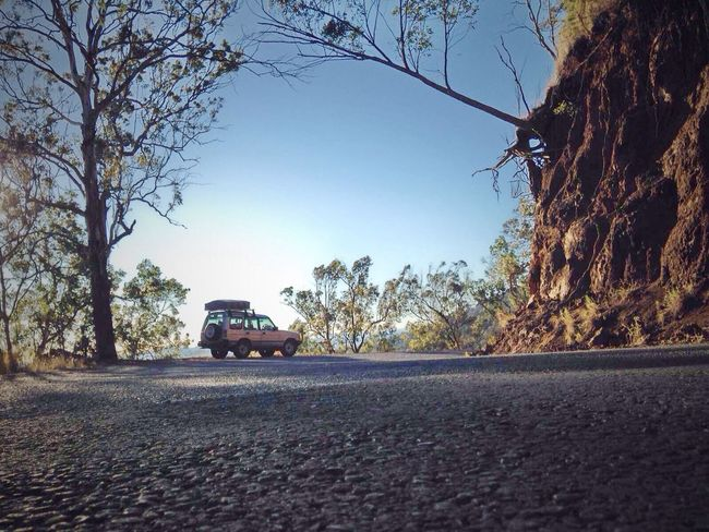 Getting In Touch Escaping Citylife Land Rover Discovery Soaking Up The Sun Hanging Tree after the jungle drive