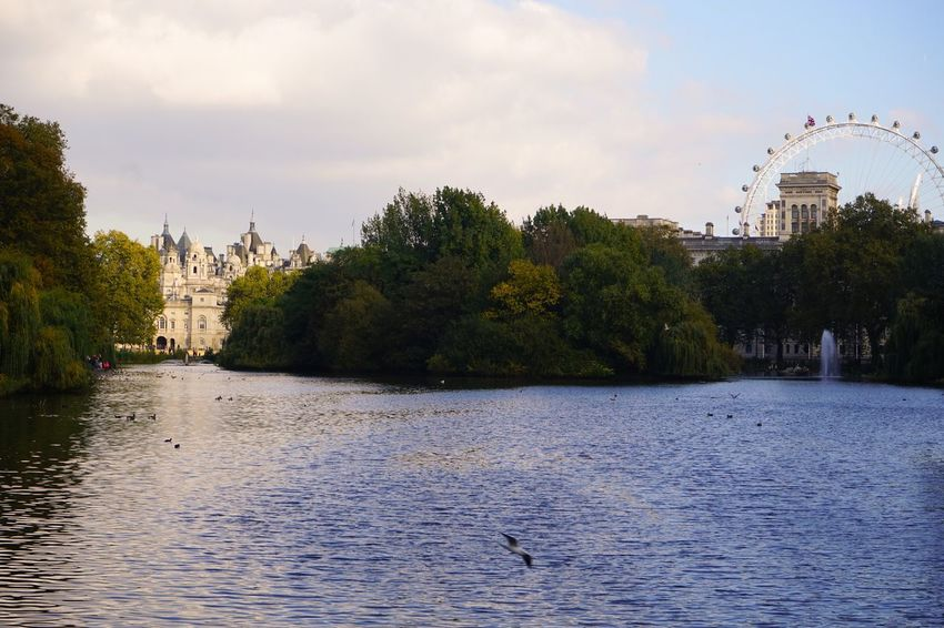 Horse Palace and Ferris Wheel Waterfront LondonEye St James Park London