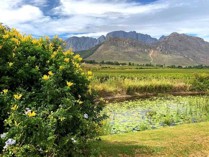 The beauty of South Africa EyeEmNewHere South Africa Africa Rickerty Bridge Mountain Agriculture Cloud - Sky Field Nature Beauty In Nature Growth Farm Mountain Range Outdoors Landscape No People Tranquility Rural Scene