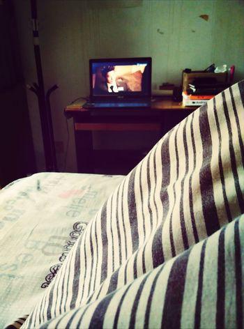 天太冷,盖被子看电影,好奢侈! Enjoying Life