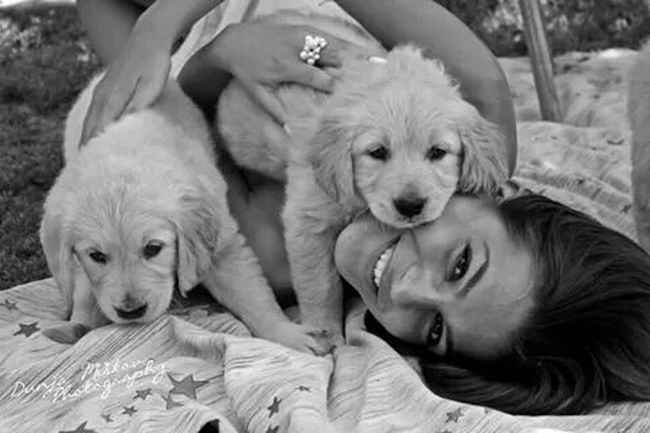 Puppies Lovemydogs Smile Enjoying Life Goldenretrievers Cute Lovely Hello World
