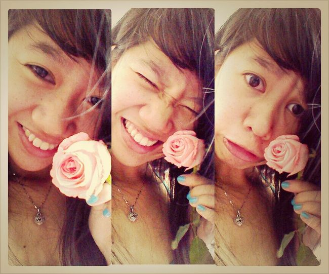 Pink Roses PINK!!!!
