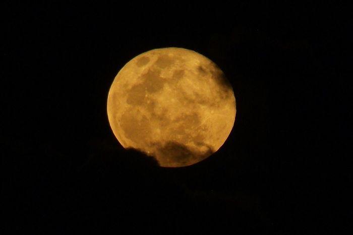 Moon Full Moon Moonlight Moon Light The Moon Beautiful Moon  Moon_collection Goodnight Moon