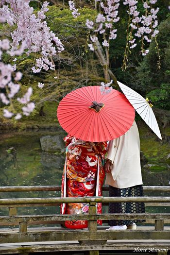 EyeEm Selects EyeEm Gallery EyeEmNewHere EyeEm Best Shots Umbrella Protection Security Plant Nature Day Water