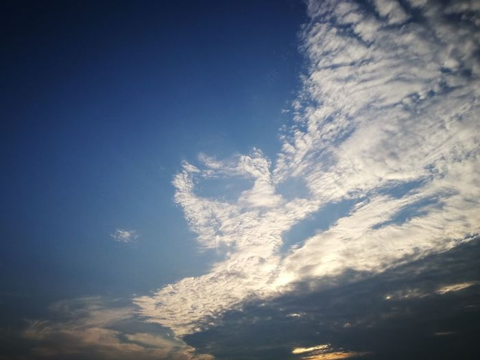 """""""A one sky"""" Blue No People Sky Nature Day Low Angle View Cloud - Sky Outdoors Beauty In Nature"""