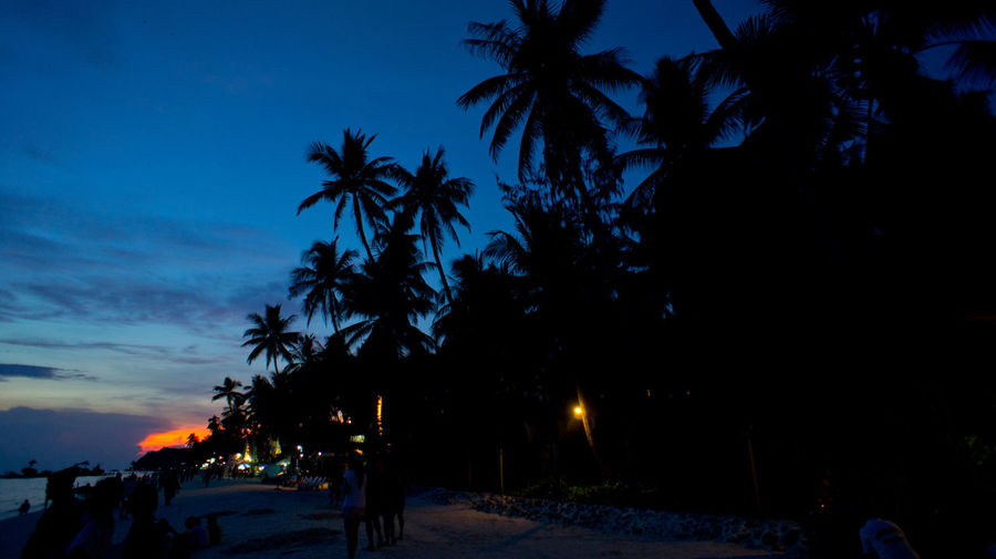 Beach Beauty In Nature Blue Boracay Cloud Cloud - Sky Dark Growth Illuminated Nature No People Outdoors Palm Tree Philippines Scenics Sky Sunset Sunset_collection The Way Forward Tranquil Scene Tranquility Tree
