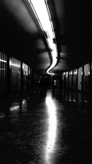 Neon Path Neon path corridor Illuminated Neon Life Corridor Hard Blacks Blackandwhite Ceiling Built Structure Architecture Lost In The Dark Underground Indoors  Black And White Friday