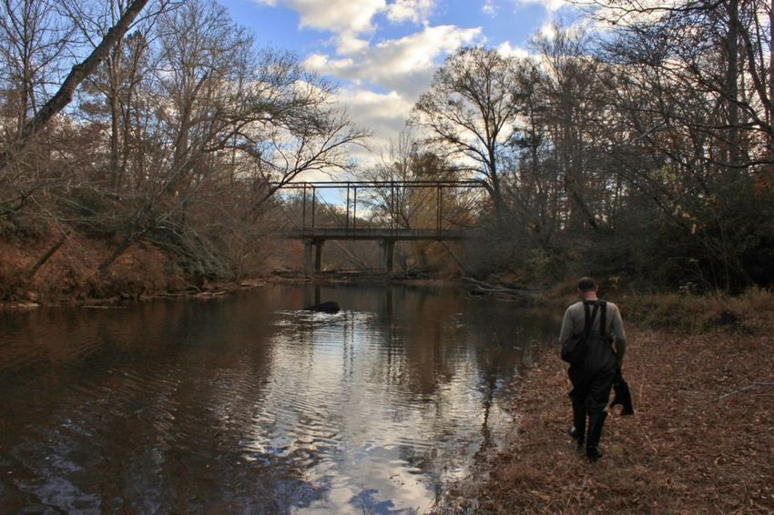 Alone Autumn Blue Sky Bridge Clouds Dejected Journey Lifestyles Men Nature Old Bridge One Person Outdoors Rear View Reflections River Tree Waders Walking Winter