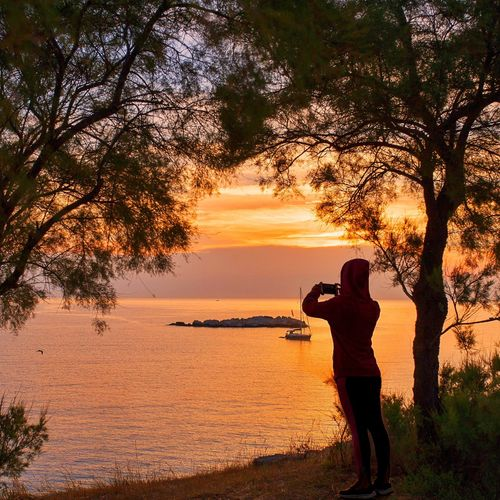 Man photographing by tree against sky during sunset