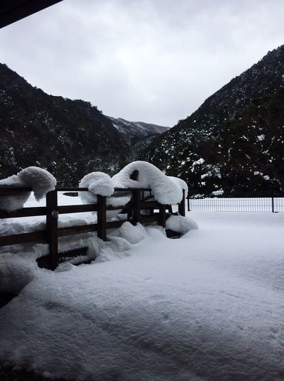 Nature Winter Snow No People Outdoors Mountain Range Japan Tree 湯の山温泉 ホテル鹿の湯
