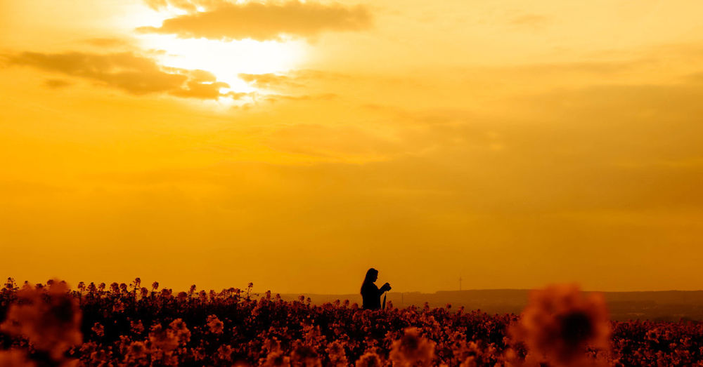 Woman standing on flowering field against sky during sunset