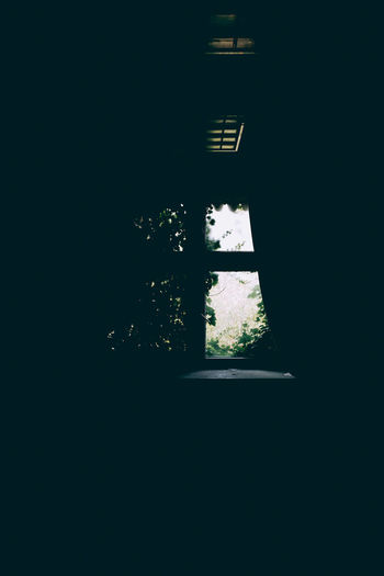 Window Dark Architecture Copy Space No People Indoors  Built Structure Plant Nature Domestic Room House Building Day Silhouette Sunlight Tree Illuminated