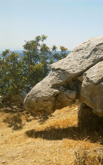 Was Siehst Du? What Do You See? Rock Rock - Object Stones Stone Nature No People Outdoors Kurios Kurioses  Stein