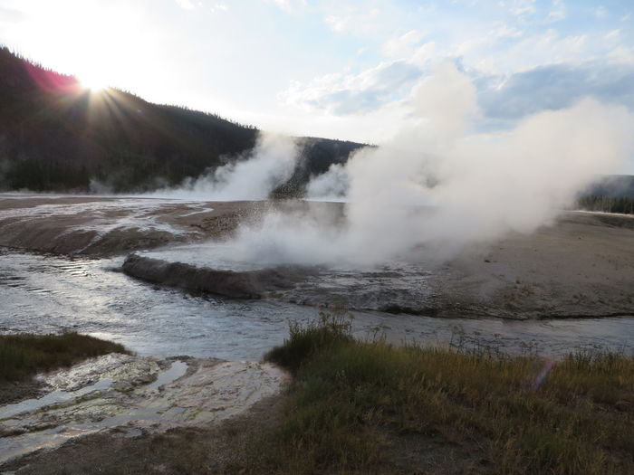 Cliff Geyser Yellow Flower Beauty In Nature Day Environment Geology Geyser Heat - Temperature Hot Spring Landscape Mountain Nature No People Non-urban Scene Outdoors Physical Geography Power In Nature Scenics - Nature Sky Smoke - Physical Structure Steam Water Yellostone