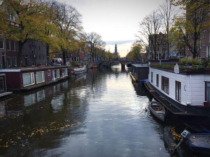 Fall in Amsterdam is beautiful