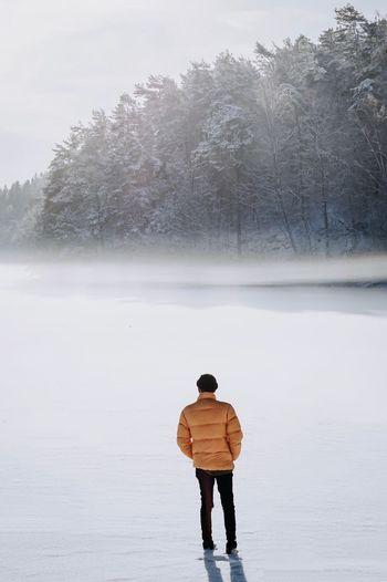 Foggy frozen