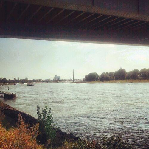 D üsseldorf am Rhein