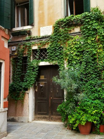 Architecture Building Exterior Residential Building Venice Back Street Architectural Feature Entrance Doorway My Year My View