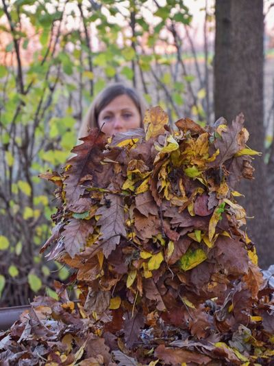 Portrait of girl with leaves on tree during autumn