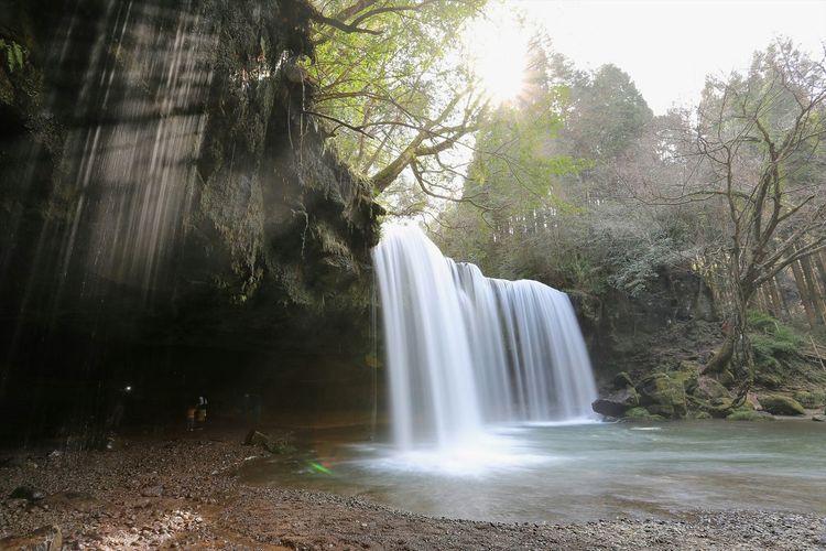 松嶋菜々子の生茶CMでお馴染みの鍋ヶ滝。滝の裏側を歩く事が出来ちゃいます(゚∀゚) Nature Waterfall Sunshine Japan EyeEm Nature Lover ~カメログまたここで~ Landscape