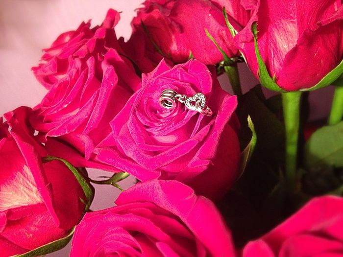 Love Rosé Pandora Flowers
