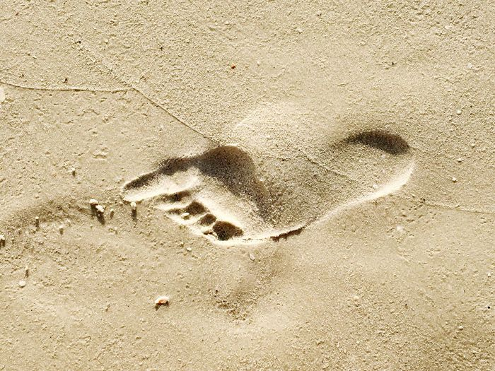 Footprint in the sand FootPrint Sand High Angle View Animal Track Perspectives On Nature Beach Bonita Beach Sandy USA EyeEmNewHere Day Outdoors No People Track - Imprint Nature Close-up