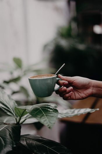 Leaf coffee || Minimalist Coffee Coffee Time Human Hand Human Body Part Hand One Person Food And Drink Holding Adult First Eyeem Photo