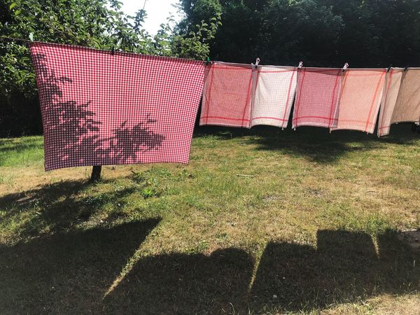 Sunlight Textile Shadow Drying No People Nature Day Plant Pattern Outdoors Grass Clothesline