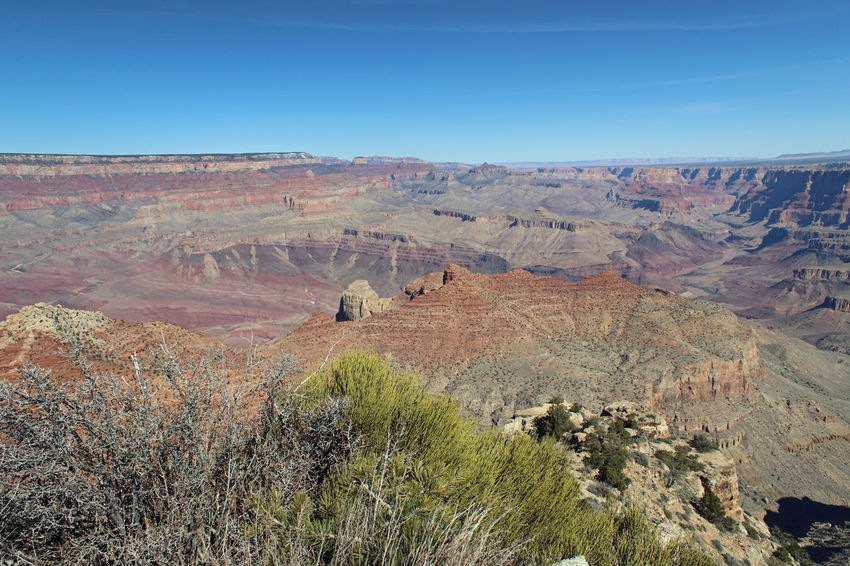Grand Canyon South Rim Arid Climate Beauty In Nature Canyon Clear Sky Day Desert Environment Geology Grass Landscape Natural Disaster Nature Nature Reserve No People Outdoor Pursuit Outdoors Ravine Rock - Object Scenics Sky