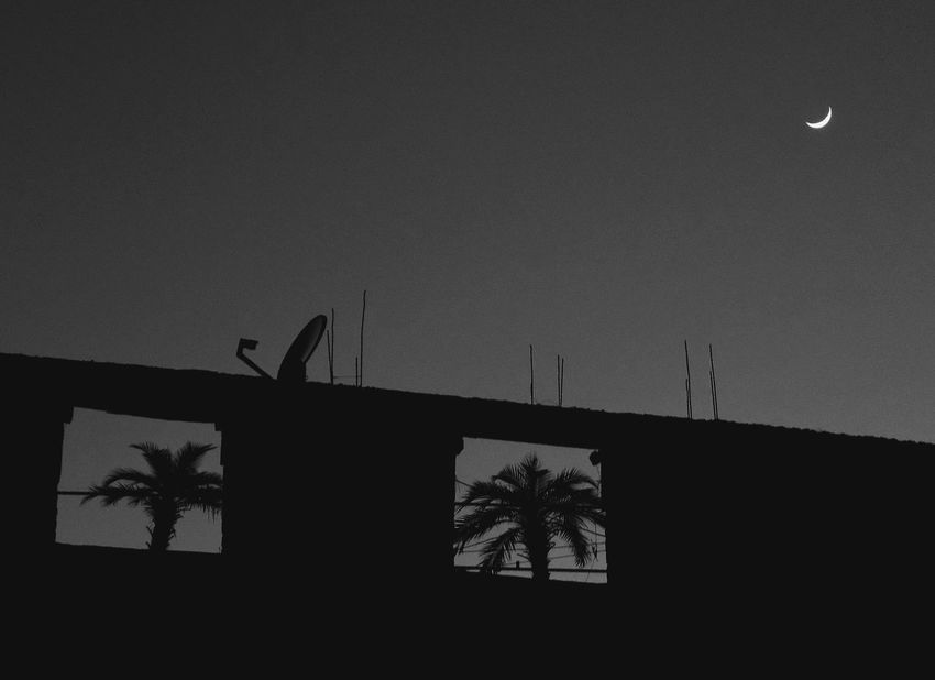 EyeEm Selects Backgrounds Outdoors No People EyeEmNewHere Streetphotography Cities At Night Moon Palm Tree Palm Blackandwhite City Xalapa De Enríquez Mexico Blackandwhite Photography Black Background Black Friday 2017 Black And White Friday