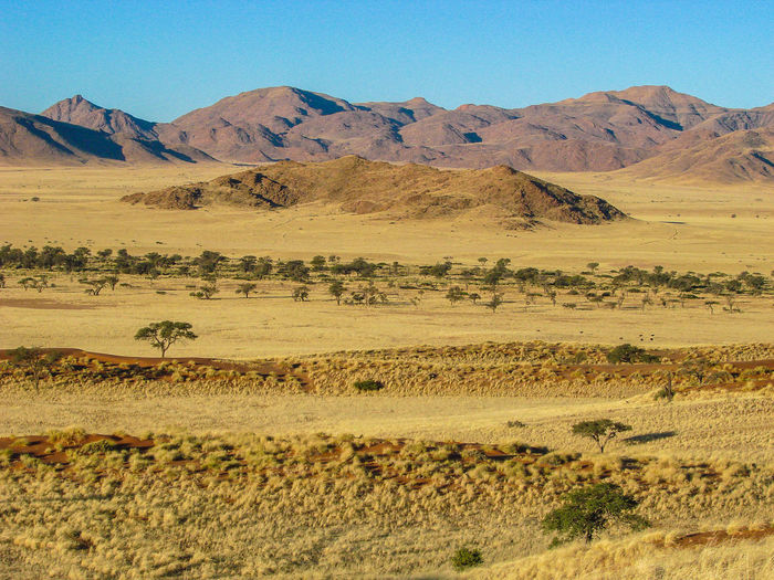 Landscape Arid Climate Arid Landscape Namibia Tranquil Scene Dry Remote Beauty In Nature Tranquility Scenics Sand Veld The Great Outdoors - 2016 EyeEm Awards The Great Outdoors With Adobe