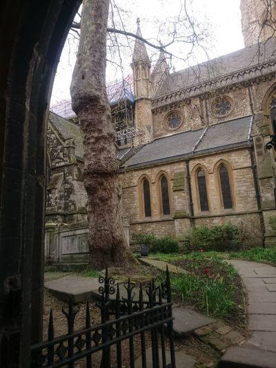 Arch Architecture Belief Building Building Exterior Built Structure Courtyard  Day History Low Angle View Nature No People Old Outdoors Place Of Worship Plant Religion Spirituality The Past Tree Window