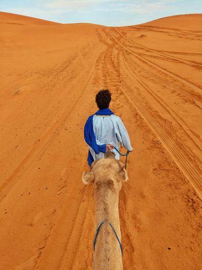 Rear view of man riding in desert