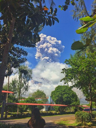 Mayon Volcano 1st Eruption StateOfCalamity Tree Growth Cloud - Sky Nature Day Park - Man Made Space Beauty In Nature The Graphic City Colour Your Horizn Stories From The City Go Higher Visual Creativity