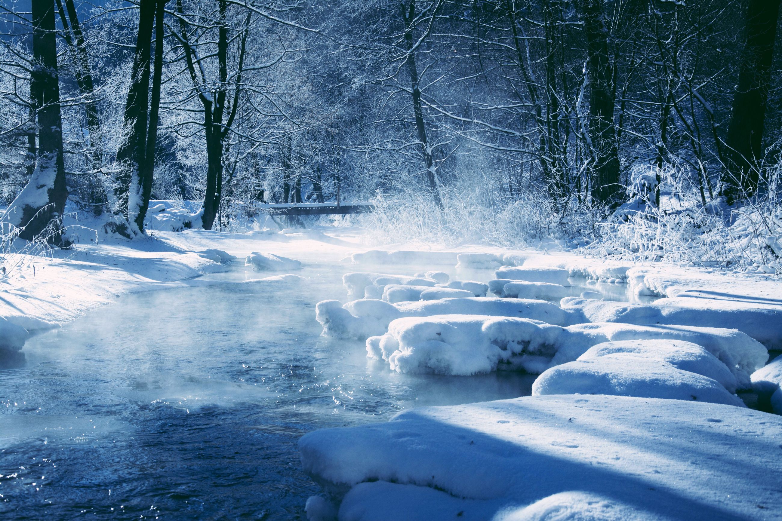 winter, snow, cold temperature, frozen, nature, beauty in nature, ice, tree, frost, tranquility, no people, tranquil scene, scenics, polar climate, landscape, day, cold, outdoors, frozen lake
