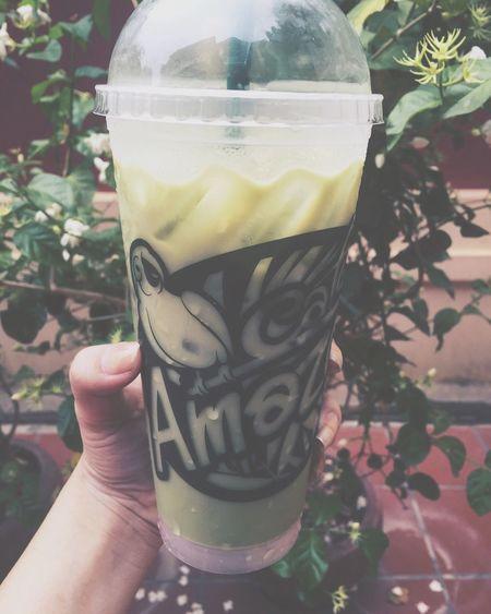 Amazon Milk Green Tea Don't Need Food Only Sweet Drink <3