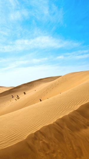 الصحراء ما اجملك