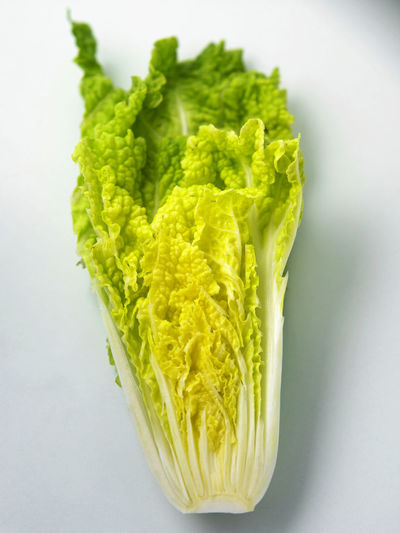 chinese cabbage on the Agriculture Chinese Cabbage Cabbage Close-up Food Food And Drink Freshness Green Color Healthy Eating Ingredient Lettuce No People Organic Produce Raw Food Studio Shot Vegetable Wellbeing