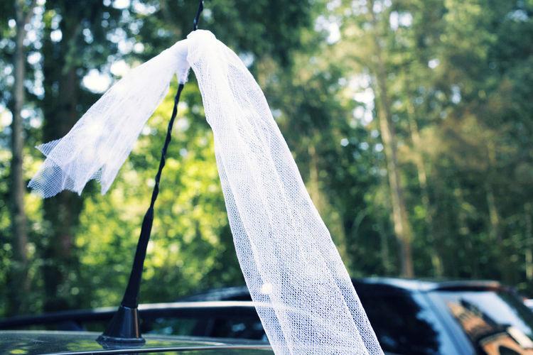 Weisser Schleierschmuck an Hochzeitsauto Antenne Automobile Autoscheiben Dekoration Heiraten Hochzeit Hochzeitsdekoration Schleier Schmücken Trauung  Weiss Weisse Schleifen