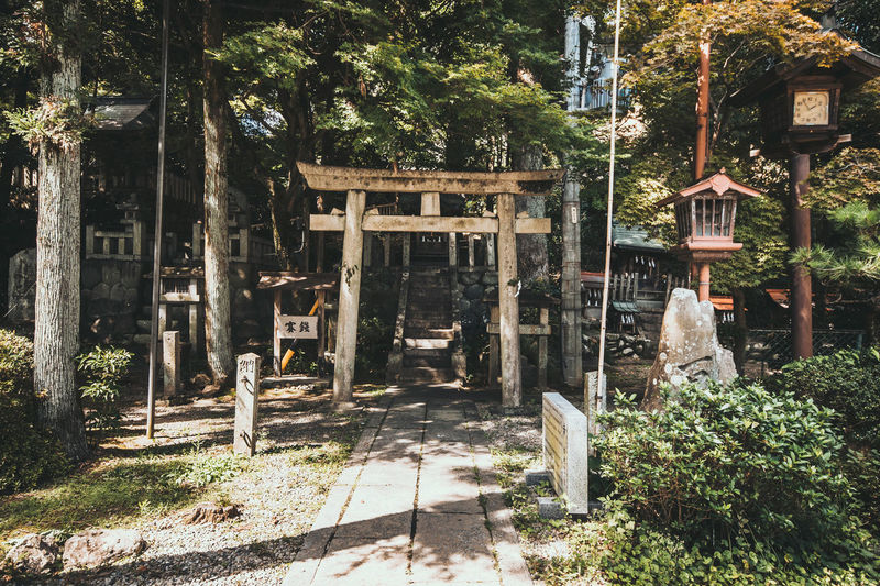 Walking into a shrine Classic Japan Japanese  Shrine TORII Travel Architecture Belief Building Exterior Built Structure Culture Old Religion Summer Tour Traditional Truck Woods 日本 犬山 神社 鳥居