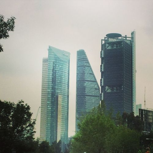 Architecture Arquitecture Mexico City Cityscapes Skyline Buildings Cityscape Office Officelife Building
