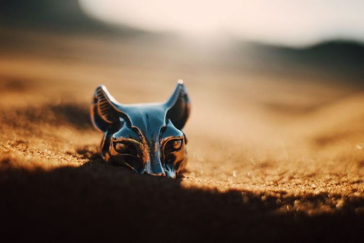 Close-up of bastet ring in desert