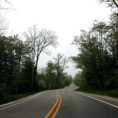 Appreciate The Scenery Curvey Road Perfectly Curved Perfectly Curved Love To Adventure Take A Drive Driving Adventure Road Trip Doorcounty Is Beautiful Doorcounty Wisconsin Green Trees Foggy Creepyroad Perfectly Imperfect Eyeem Roads Adventure Club Adventure Time Love Summer Road Road Road