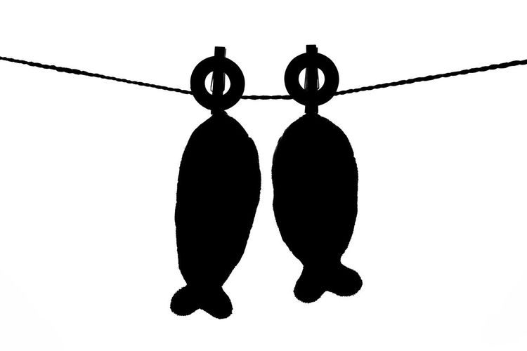 Black and white two pillows fish shape hanging on the rope Fish Shaped Black And White Close-up Day Fish Hanging No People Outdoors Silhouette White Backgrou White Background