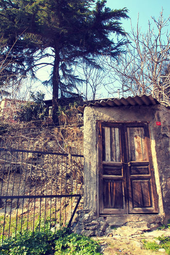 EyeEmNewHere Abandoned Architecture Bare Tree Building Building Exterior Built Structure Closed Day Door Entrance Gardendoor House Land Nature No People Old Outdoors Plant Tree Wood - Material