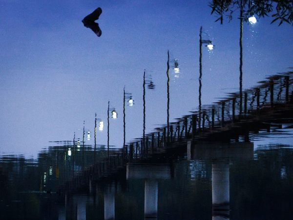 Dream State Inversion Bridge White Rock Lake EyeEm_crew