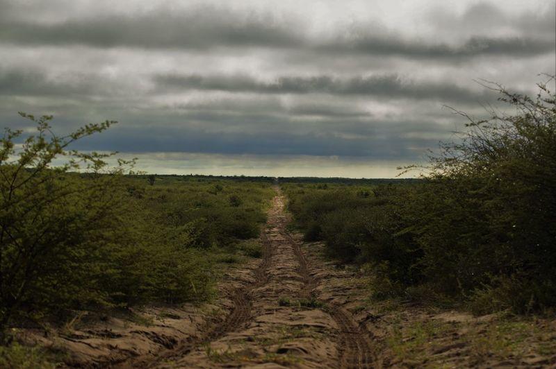 Sany road to