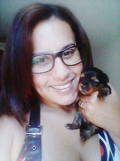 Sao Paulo - Brazil Cute♡ I Love My Pets Yorkshire Terrier Yorkshire Amora Cute Dog  Amora Baby <3