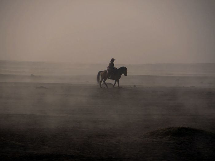Side View Of Man Riding Horse At Beach Against Sky