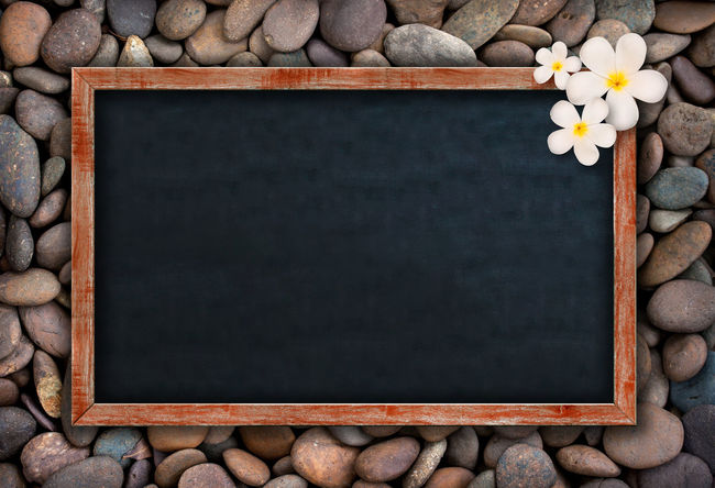 Black Color Blackboard  Blank Board Copy Space Directly Above Flower Flowering Plant Frame High Angle View Indoors  Large Group Of Objects No People Pebble Rock Solid Stone - Object White Color Wood - Material